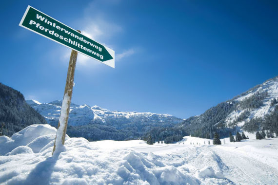 Pferdeschlittenfahrten im Winterurlaub in Obertauern, Salzburger Land